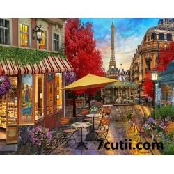Pictura pe numere - Cafeneaua secreta din Paris