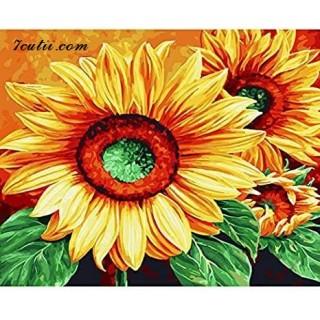 Pictura pe numere -Floarea, mangaiata de razele soarelui