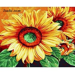 Pictura pe numere - Floarea, mangaiata de razele soarelui