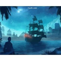 Pictura pe numere - Piratii din Caraibe