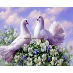 Pictura pe numere - Doi porumbei albi