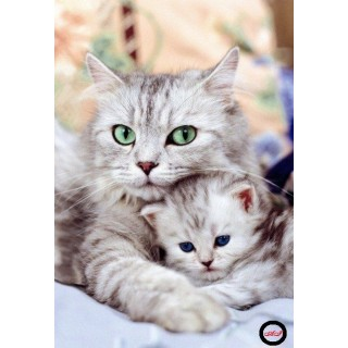 Goblen de diamante - Pisicuta in bratele mamei sale