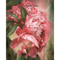 Pictura pe numere - Fluture frumos si bujori roz