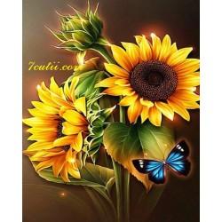 Pictura pe numere - Sclipitul foareasoarelui si fluturele albastru