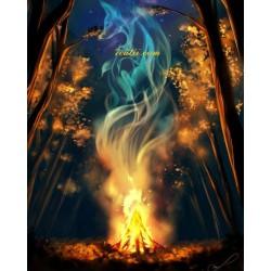 Pictura pe numere - Focul zanelor
