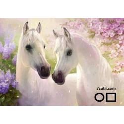 Goblen de diamante - Doi cai albi - frati
