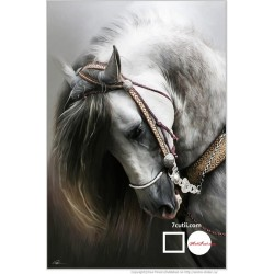 Goblen de diamante - Calul alb
