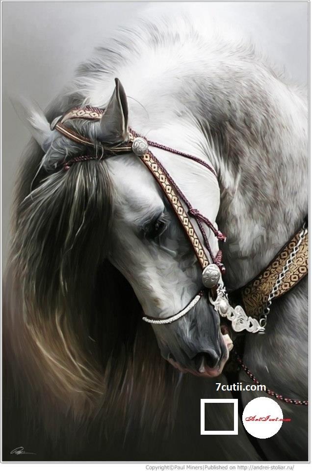 Goblen de diamante - Calul alb: Dimensiuni si tip - 30x20 cm Margele Patrate
