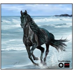 Goblen de diamante - Cal negru alearga pe malul marii
