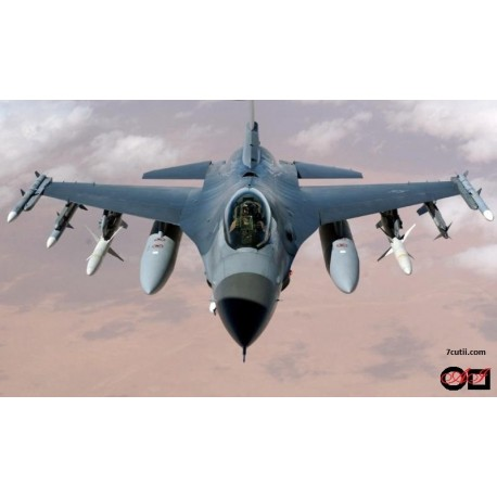 Goblen de diamante -  Avion militar de lupta
