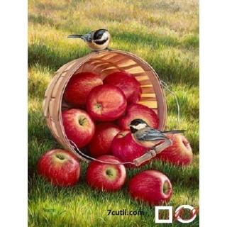 Goblen de diamante -  Vadra cu mere