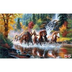 Goblen de diamante - Herghelia cailor salbatici