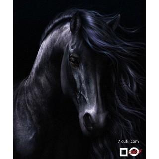 Goblen de diamante - Cal negru ca si noaptea