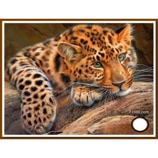 Goblen de diamante -Leopard