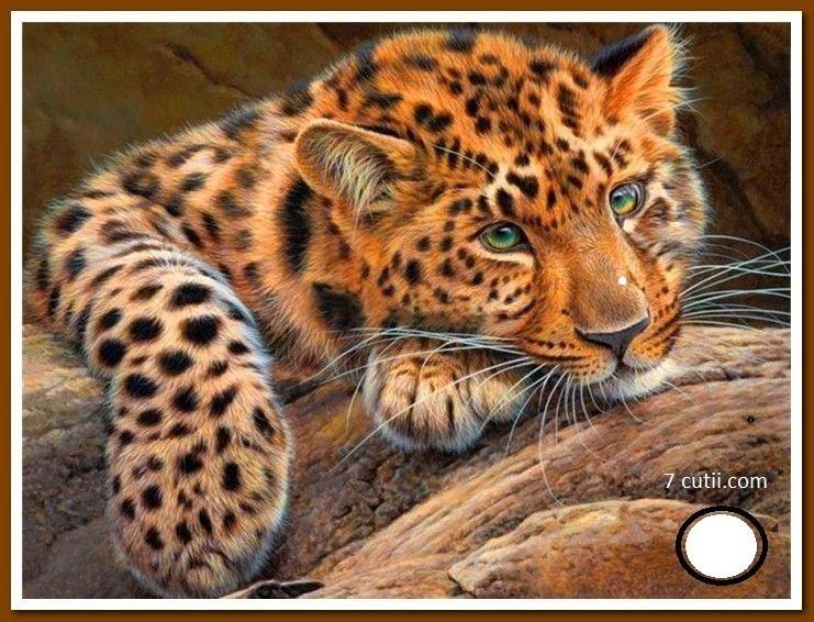 Goblen de diamante - Leopard: Dimensiuni si tip - 25x20 cm Margele Patrate