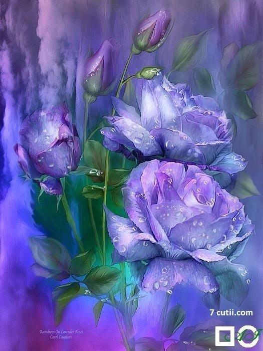 Goblen de diamante - Trandafiri Violeti: Dimensiuni si tip - 32x24 cm Margele Rotunde (Circulare)