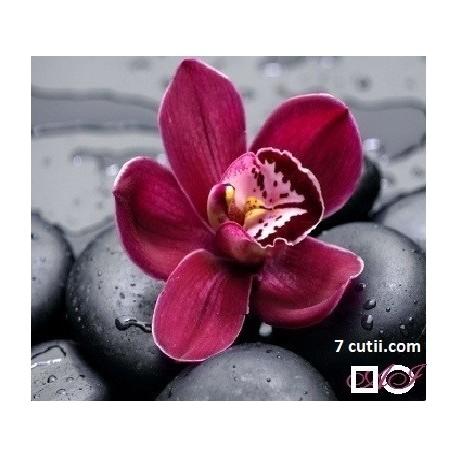 Goblen de diamante - Orhidee mov