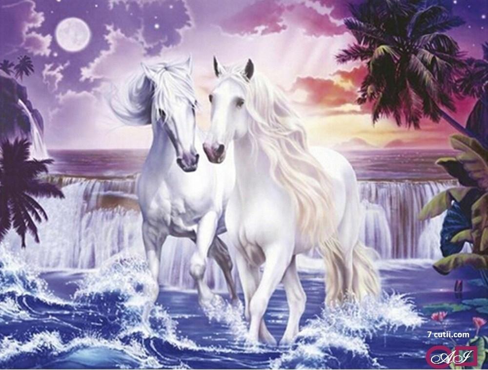 Goblen de diamante - Cai albi si liberi: Dimensiuni si tip - 48x36 cm Margele Patrate