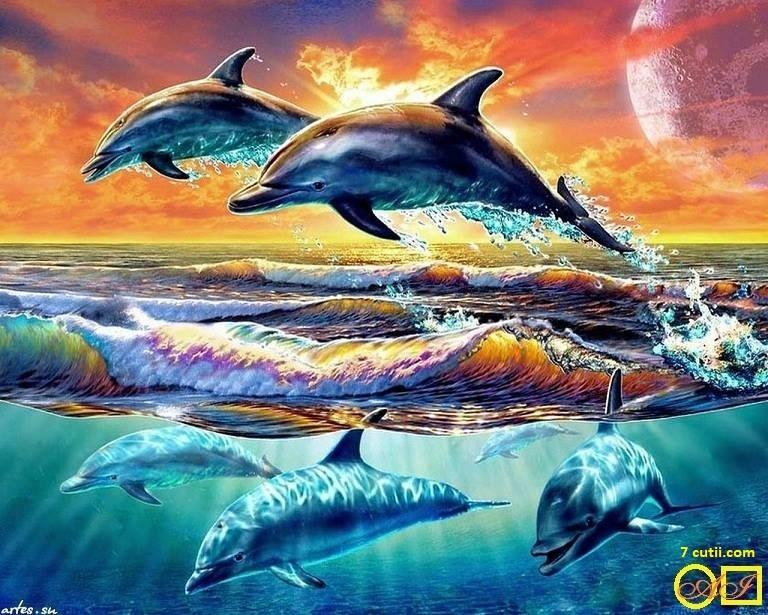 Goblen de diamante - Delfini de mare: Dimensiuni si tip - 32x24 cm Margele Patrate