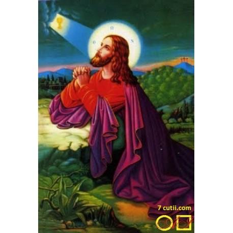 Goblen de diamante - Isus se roaga in gradina Ghetsimani