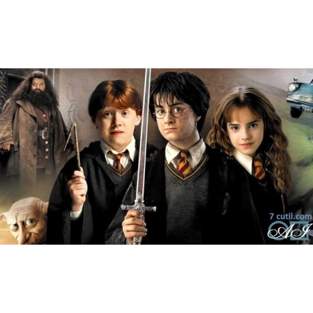 Goblen de diamante - Harry Potter - elevii din Hogwards
