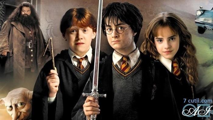 Goblen de diamante - Harry Potter - elevii din Hogwards: Dimensiuni si tip - 44x25 cm Margele Circulare
