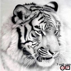 Goblen de diamante - Tigru in alb si negru