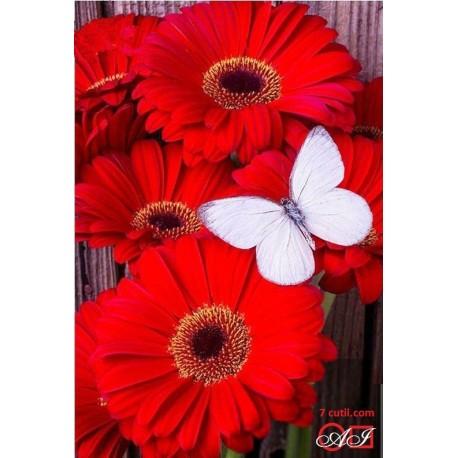 Goblen de diamante - Gerberi rosii - fluture alb