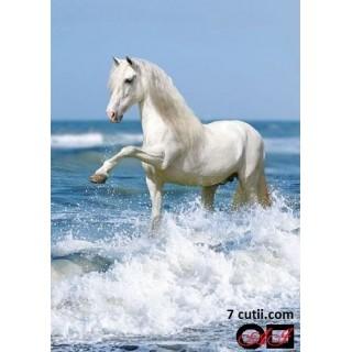Goblen de diamante - Calul alb printre valuri
