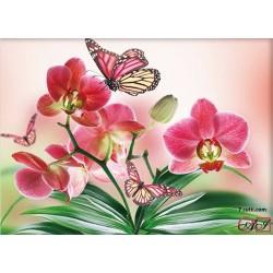 Goblen de diamante - Orchidei si fluturi