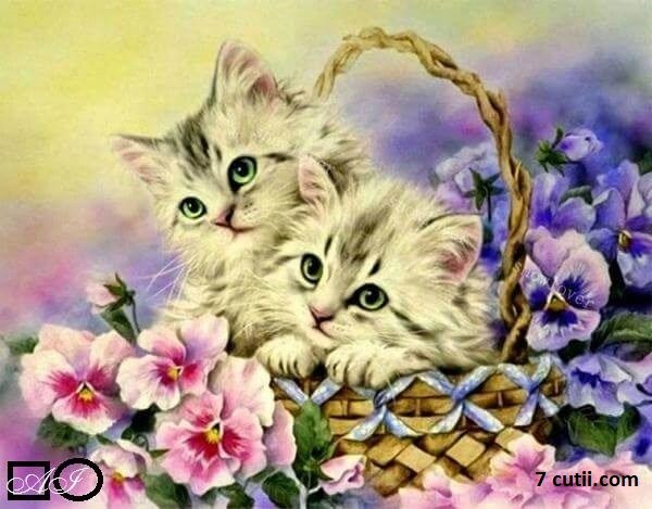 Goblen de diamante - Doua pisicute intr-un cos cu flori: Dimensiuni si tip - 36x28 cm Margele Rotunde (Circulare)