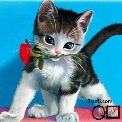 Goblen de diamante - Pisica cu trandafir: Dimensiuni si tip - 25x25 cm Margele Patrate