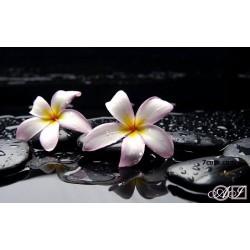 Goblen de diamante - Dupa ploaie
