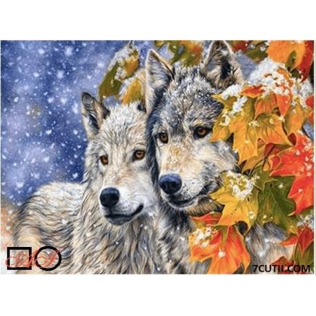 Goblen de diamante -Povestea celor 2 lupi