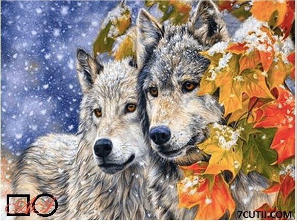 Goblen de diamante -Povestea celor 2 lupi: Dimensiuni si tip - 36x24 cm Margele Patrate
