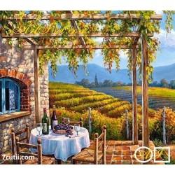 Goblen de diamante - Casa printre viticole