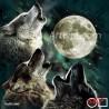 Goblen  de  diamante  Luna plina