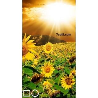 Goblen  de  diamante  Dimineata soarelui si floarea soarelui