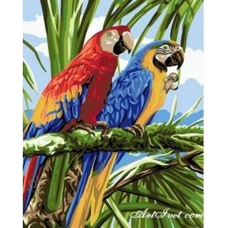 Pictura pe numere - Papagali pe ramura