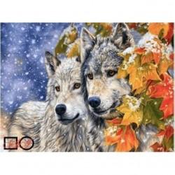 Pictura pe numere – Povestea celor 2 lupi