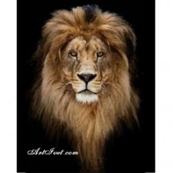 Pictura pe numere - Coama leului