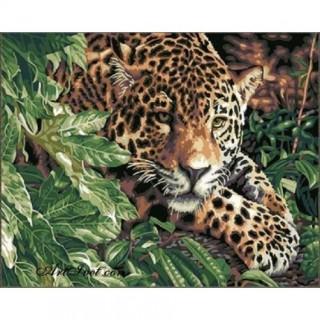 Pictura pe numere - Leopard la panda