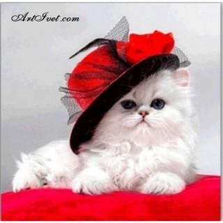 Pictura pe numere – Pisica alba cu palarie rosie