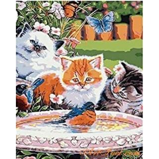 Pictura pe numere – Lectia pisicutelor