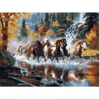 Pictura pe numere - Herghelia cailor salbatici