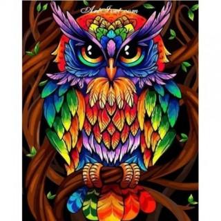 Pictura pe numere - Bufnita colorata
