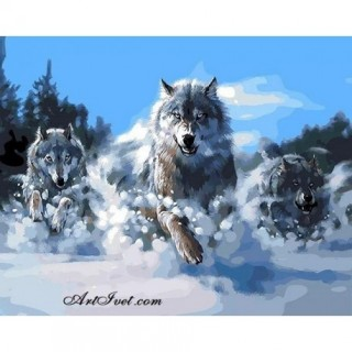 Pictura pe numere - Lupii in atac