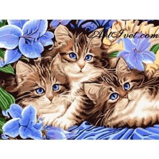 Pictura pe numere - Pisicute si flori albastre