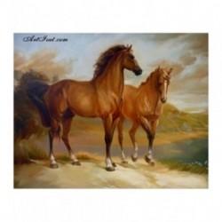Pictura pe numere - Doi cai maro pe mal