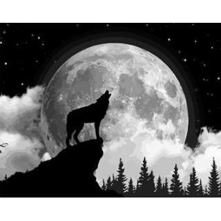 Pictura pe numere - Salutam luna